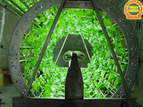 omega gardens grow system