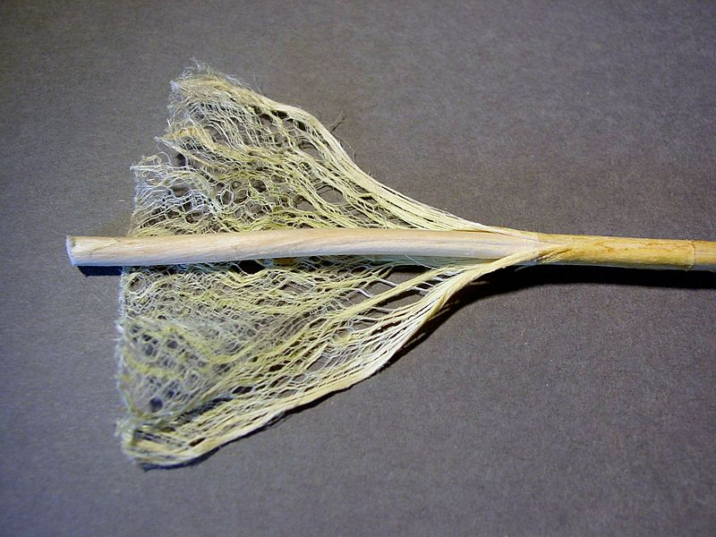 Hemp Fiber for Clothing