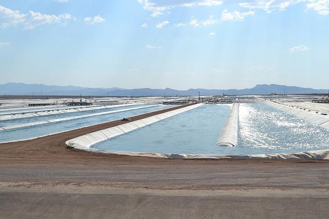 Algae Raceway Ponds