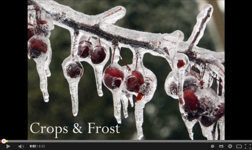 Agricultural Losses 2014 from Cold Temperatures