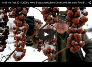 Mini Ice Age 2015-2035  Nova Scotia Agriculture Decimated, Insurers Reel from Cold Claims