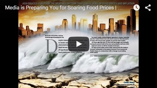 Media is Preparing You for Soaring Food Prices