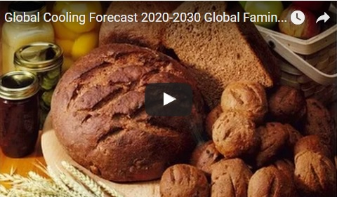 Global Cooling Forecast 2020-2030 Global Famine