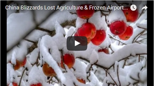 china-blizzards-lost-agriculture-frozen-airports-is-there-a-solution