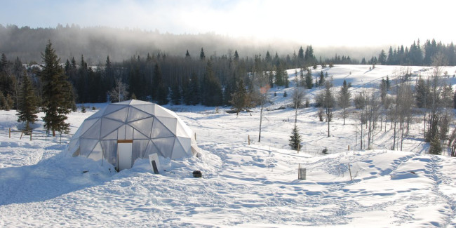 geodesic grow dome snow